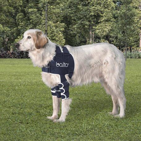 BT-LUX-Balto-Dog-Shoulder-Brace-1